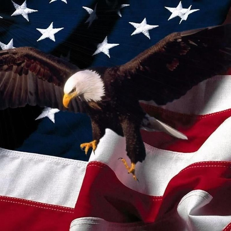 10 New American Flag With Eagle Background FULL HD 1920×1080 For PC Background 2020 free download pictures of eagles with american flag eagle and american flag 800x800