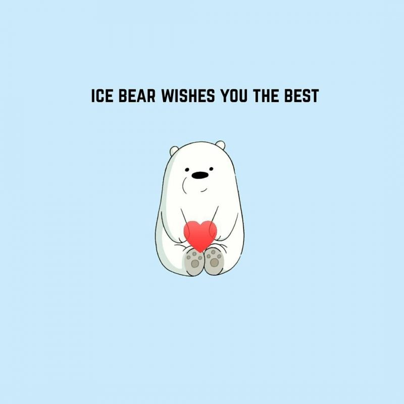 10 Top Ice Bear We Bare Bears Wallpaper FULL HD 1080p For PC Background 2020 free download pinburcu g on illustrations with the bear pinterest bare 800x800