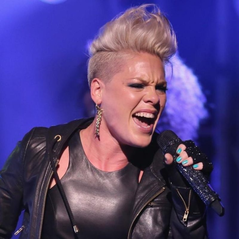 10 New Images Of Pink The Singer FULL HD 1080p For PC Desktop 2020 free download pink activist singer animal rights activist dancer biography 800x800