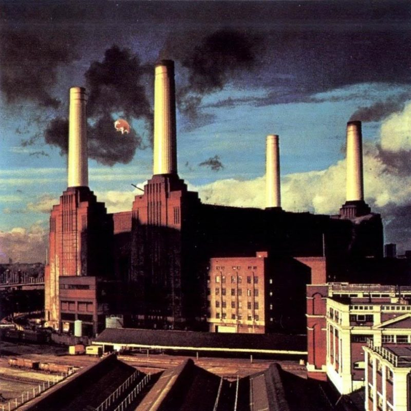 10 New Pink Floyd Animals Hd FULL HD 1920×1080 For PC Background 2020 free download pink floyd animals album cover pig photo at battersea power 800x800