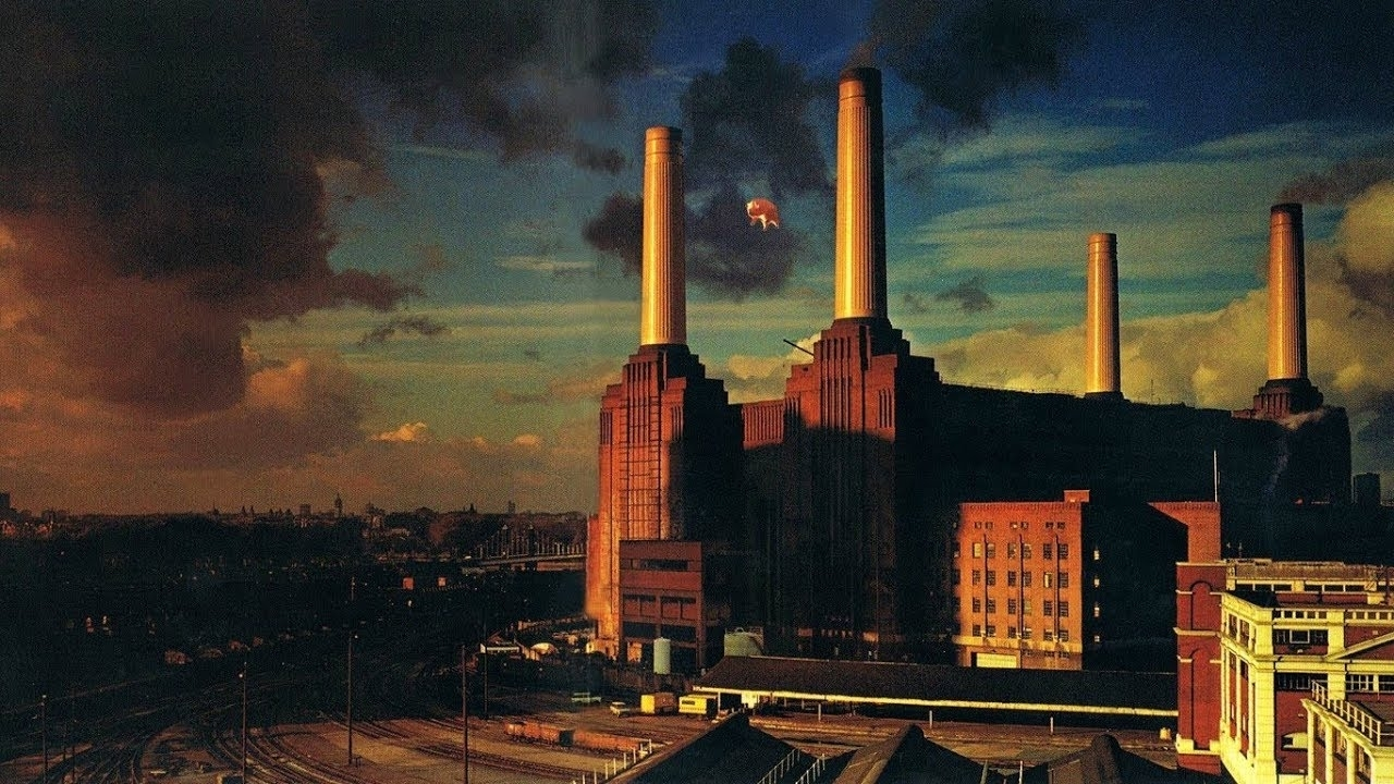 pink floyd: animals live (audio) - youtube