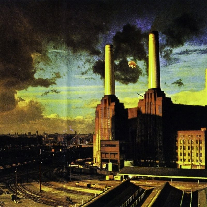 10 New Pink Floyd Wallpaper 1080P FULL HD 1080p For PC Background 2021 free download pink floyd animals wallpaper real hdsuinkka on deviantart 1 800x800
