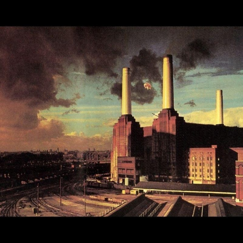 10 New Pink Floyd Animals Hd FULL HD 1920×1080 For PC Background 2020 free download pink floyd animals wallpapers wallpaper cave 800x800