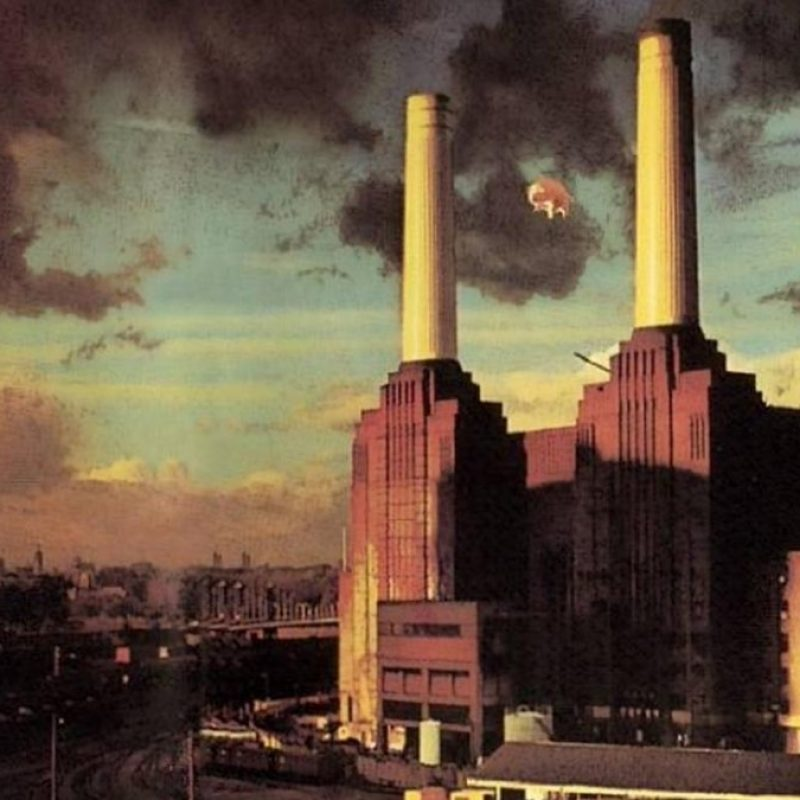 10 New Pink Floyd Animals Hd FULL HD 1920×1080 For PC Background 2020 free download pink floyd on twitter not the most conventional advert for an 800x800