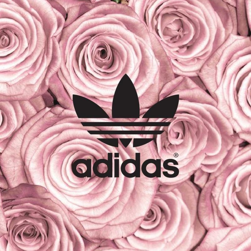10 New Rose Gold Iphone 7 Wallpaper FULL HD 1920×1080 For PC Desktop 2020 free download pinkoh shinni on adidas wallpaper pinterest wallpaper 800x800