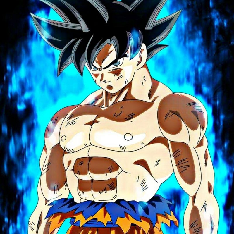 10 New Goku New Form Wallpaper FULL HD 1920×1080 For PC Desktop 2020 free download pinmatthew cole on dragon ball z pinterest dragon ball 800x800
