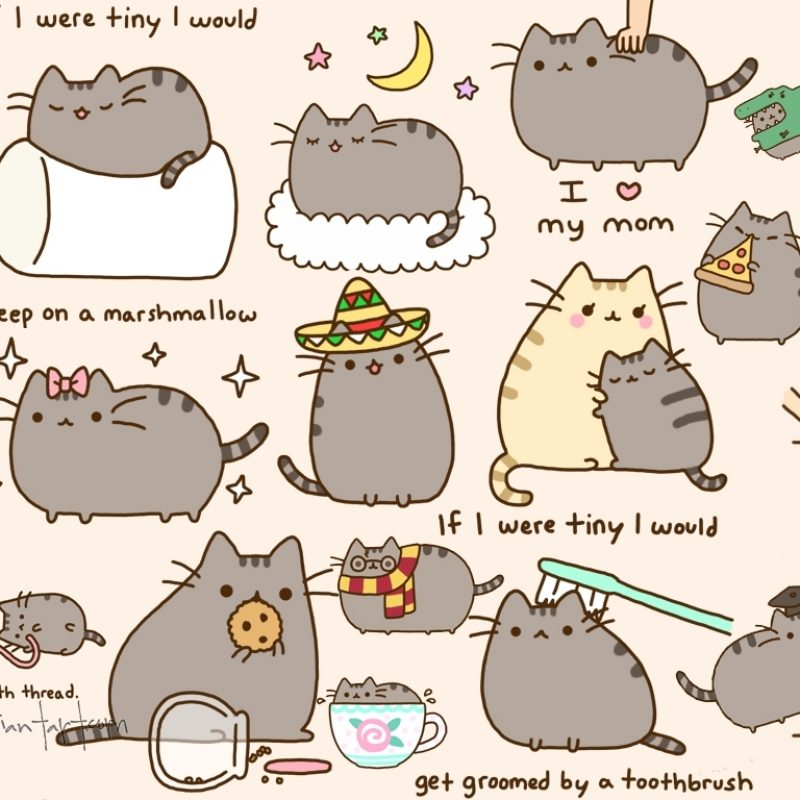 10 Latest Pusheen The Cat Wallpaper FULL HD 1920×1080 For PC Background 2020 free download pinmavissywong on pusheen the cat pinterest pusheen and 800x800