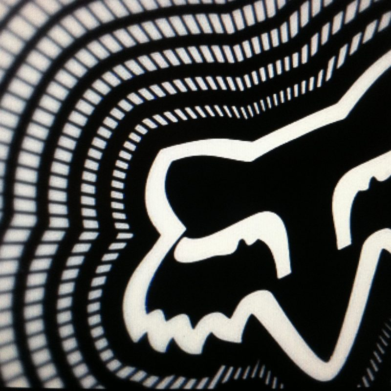 10 Most Popular Fox Dirt Bike Logo FULL HD 1920×1080 For PC Background 2018 free download pinronnie wolf on my style pinterest motocross 800x800
