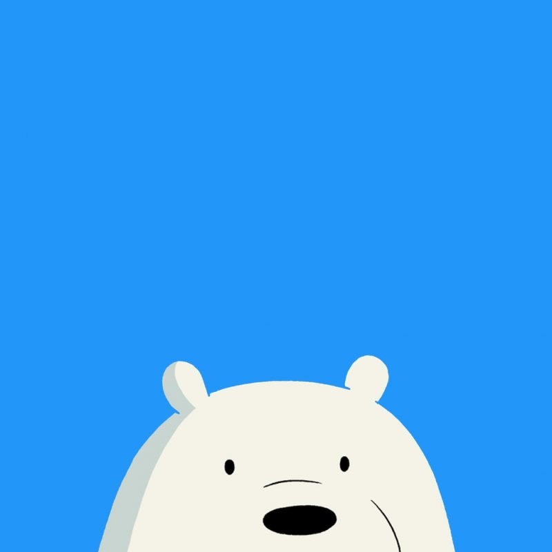 10 Top Ice Bear We Bare Bears Wallpaper FULL HD 1080p For PC Background 2018 free download pinynnhi on ynnh pinterest bare bears wallpaper and 800x800