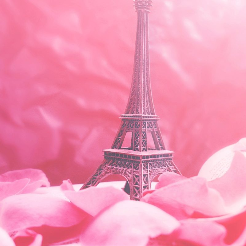 10 New Pink Eiffel Tower Wallpaper FULL HD 1920×1080 For PC Desktop 2018 free download pip paris in pinkredanshy deviantart imspoiled247s 800x800