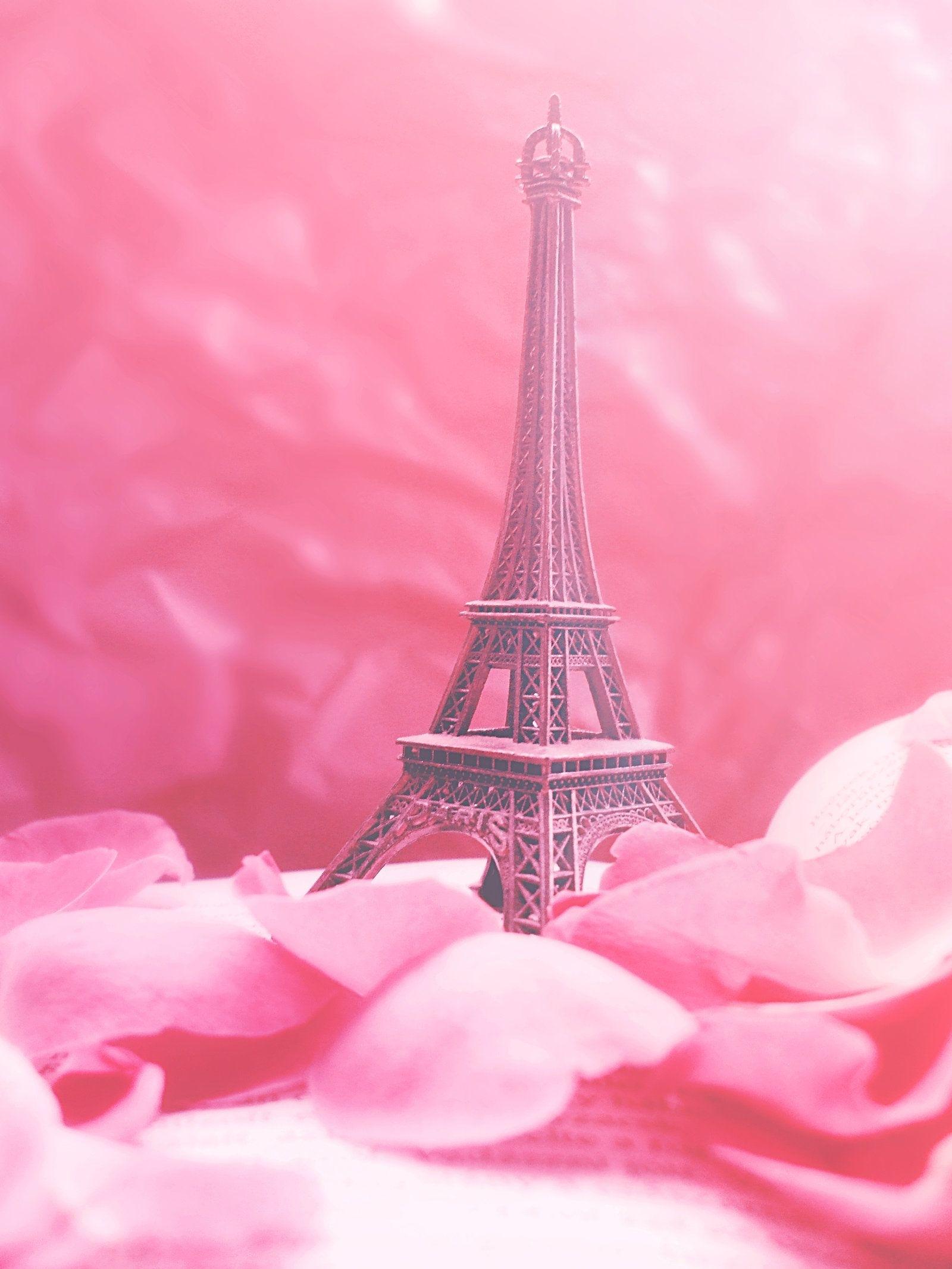 pip - paris in pinkredanshy.deviantart   imspoiled247's