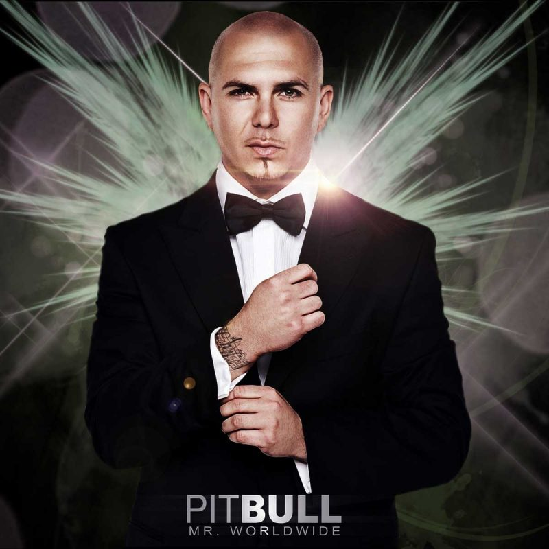 10 New Pitbull The Singer Pictures FULL HD 1080p For PC Desktop 2021 free download pitbull rapper wallpapers wallpaper cave 800x800
