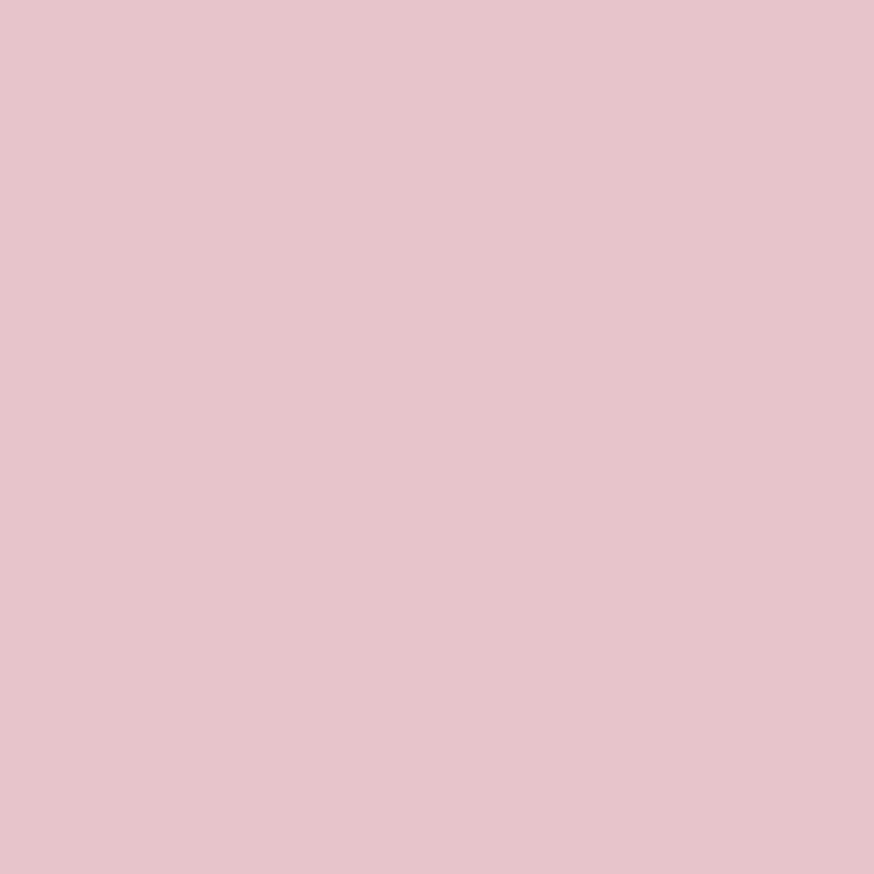 10 Most Popular Plain Light Pink Wallpaper FULL HD 1080p For PC Background 2018 free download plain pink wallpaper 69 images 800x800