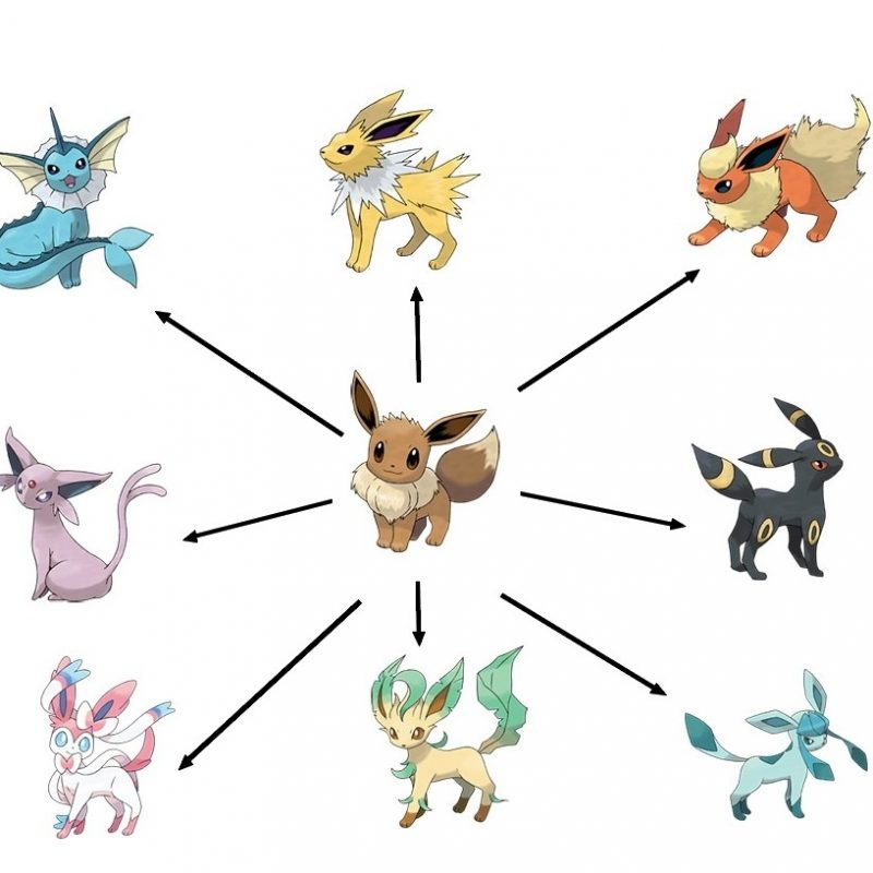 10 Best Pictures Of Eevee Evolutions FULL HD 1920×1080 For PC Desktop 2020 free download pokemon ultra sun and moon eevee evolutions and their strategic 800x800