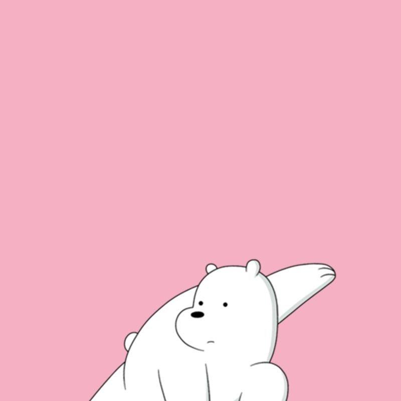 10 Top Ice Bear We Bare Bears Wallpaper FULL HD 1080p For PC Background 2018 free download polar bear ice bear we bare bears e0b881e0b8b2e0b8a3e0b98ce0b895e0b8b9e0b899 pinterest bare 800x800