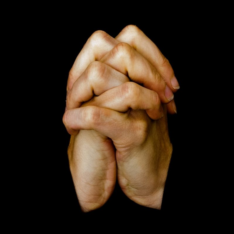 10 Best Image Of Praying Hands FULL HD 1080p For PC Desktop 2021 free download praying hands free stock photo public domain pictures 1 800x800