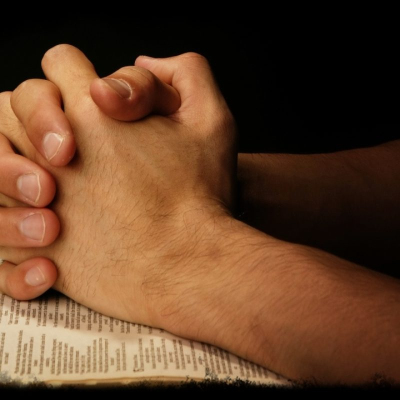 10 Best Image Of Praying Hands FULL HD 1080p For PC Desktop 2021 free download praying hands on scripture holy trinity anglican church calgary 800x800