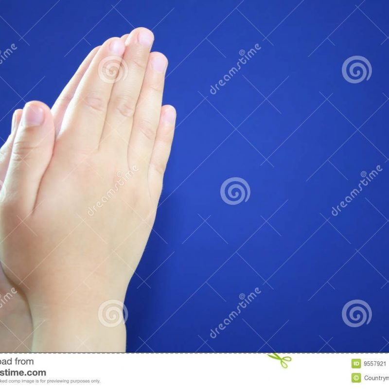 10 Most Popular Images Of Praying Hands FULL HD 1080p For PC Desktop 2020 free download praying hands stock images download 13226 photos 800x800