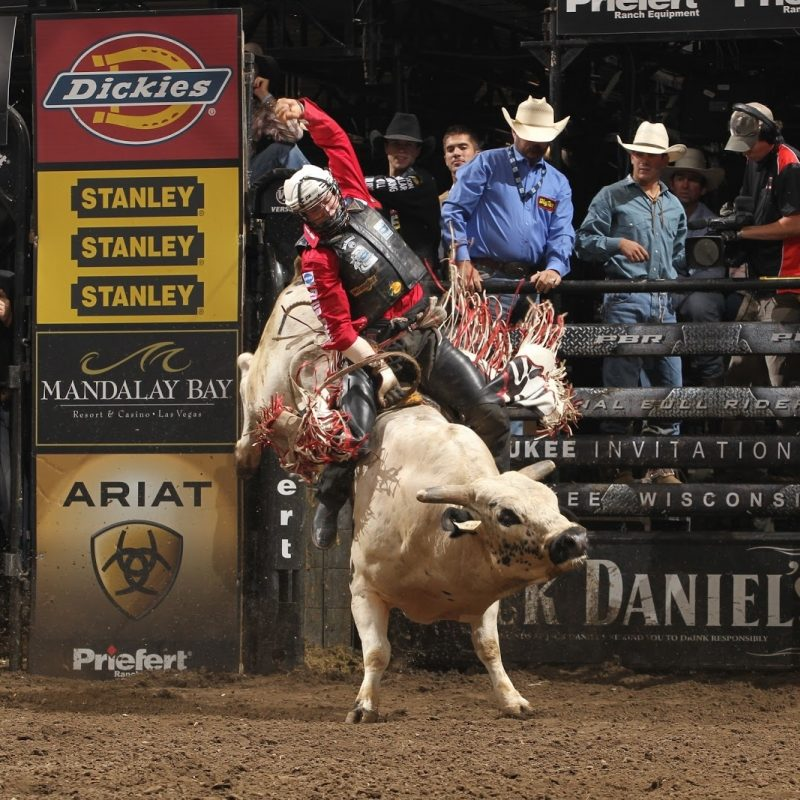 10 Best Professional Bull Riders Inc FULL HD 1920×1080 For PC Background 2021 free download professional bull riders hit nyc boyz rule our world 800x800