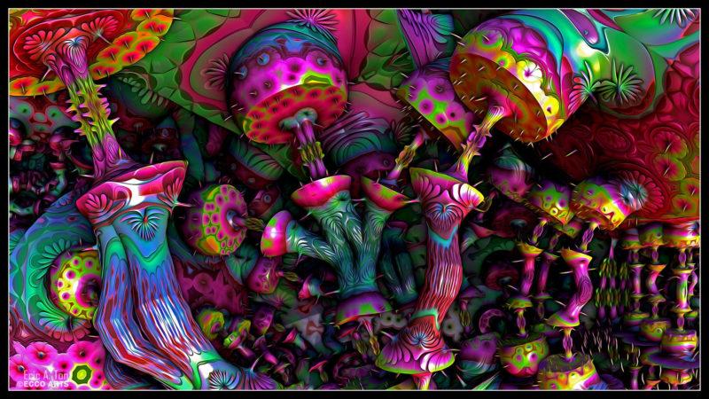 10 Top Magic Mushroom Wallpaper FULL HD 1080p For PC Background 2020 free download psychedelic mushroom wallpapers top free psychedelic mushroom 800x450