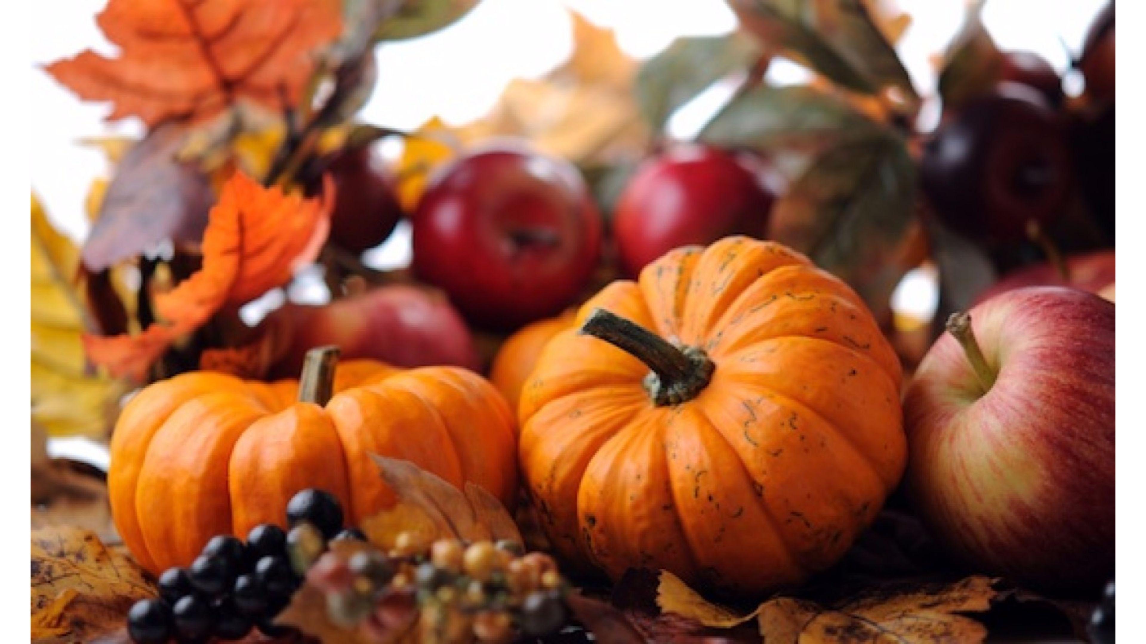 pumpkin and fruit 4k fall wallpaper | free 4k wallpaper