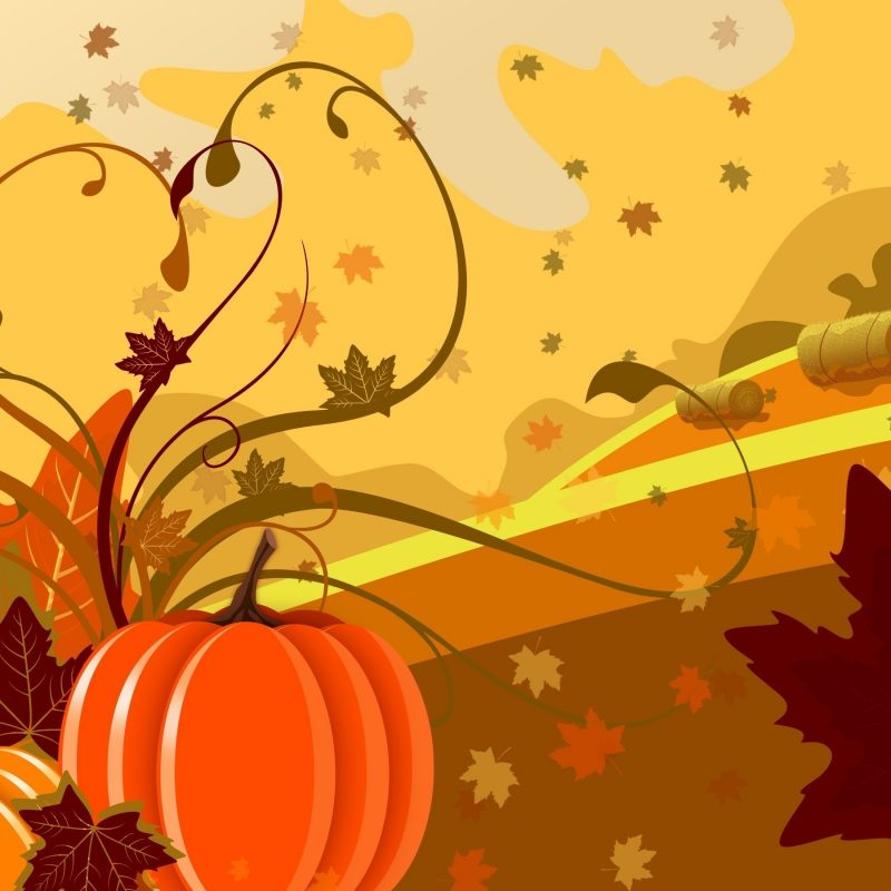 10 New Fall Wallpaper With Pumpkins FULL HD 1920×1080 For PC Background 2020 free download pumpkin and leaves wallpaper digital art wallpapers 1864 800x800