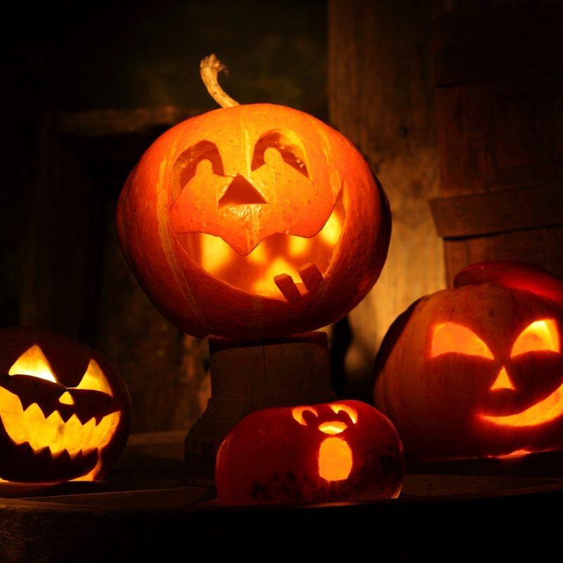 10 Top Cute Pumpkin Halloween Wallpaper FULL HD 1920×1080 For PC Desktop 2018 free download pumpkin lights walldevil 800x800