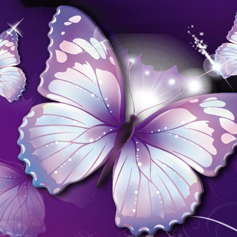 10 New Purple Butterfly Background Images FULL HD 1920×1080 For PC Desktop 2018 free download purple butterfly background c2b7e291a0 800x800