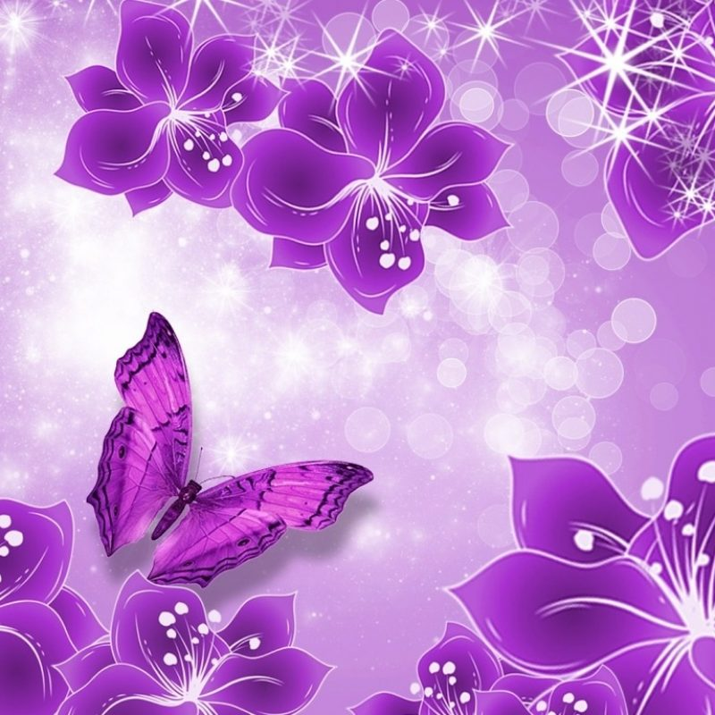 10 New Purple Butterfly Background Images FULL HD 1920×1080 For PC Desktop 2018 free download purple butterfly background purple butterfly hd desktop wallpaper 800x800