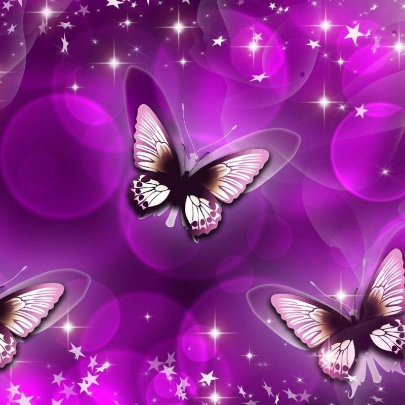 10 New Purple Butterfly Background Images FULL HD 1920×1080 For PC Desktop 2018 free download purple butterfly backgrounds 55 images 800x800
