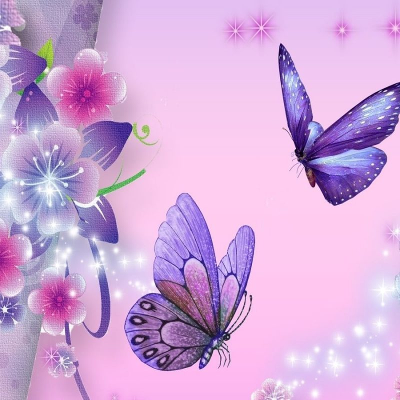 10 New Purple Butterfly Background Images FULL HD 1920×1080 For PC Desktop 2018 free download purple butterfly backgrounds background hd wallpaper butterfly 800x800