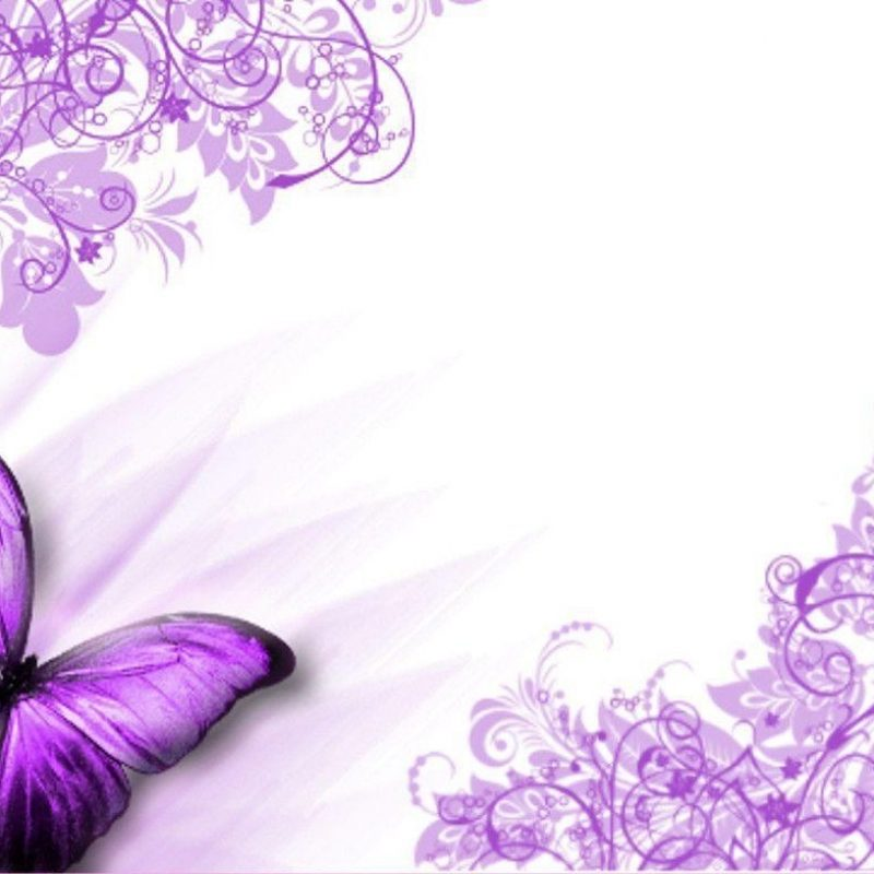 10 New Purple Butterfly Background Images FULL HD 1920×1080 For PC Desktop 2018 free download purple butterfly backgrounds wallpaper cave 800x800
