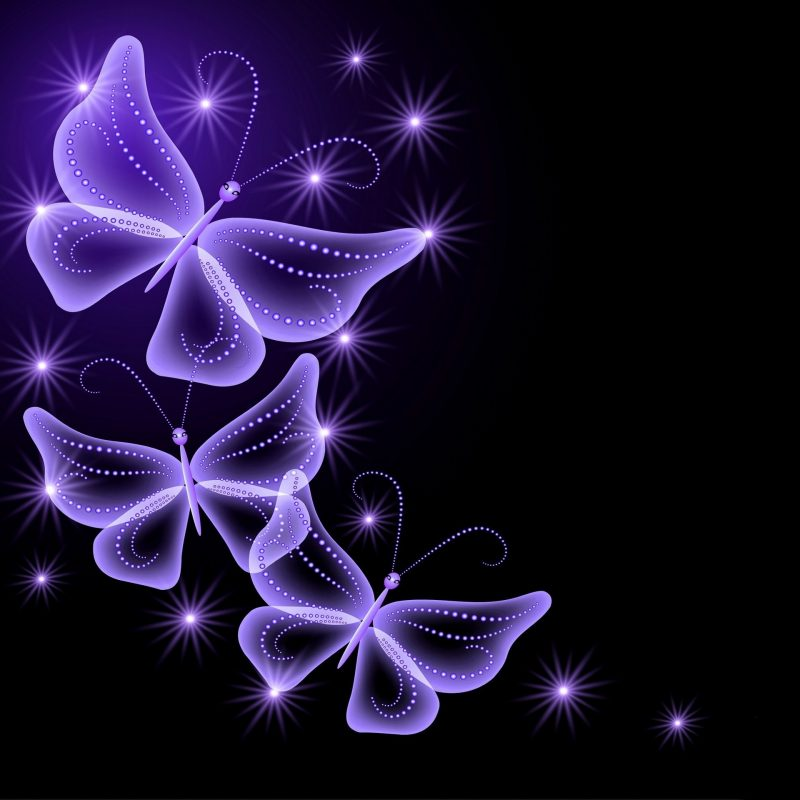 10 New Purple Butterfly Background Images FULL HD 1920×1080 For PC Desktop 2018 free download purple rose background wallpaper back wallpapers for purple 800x800