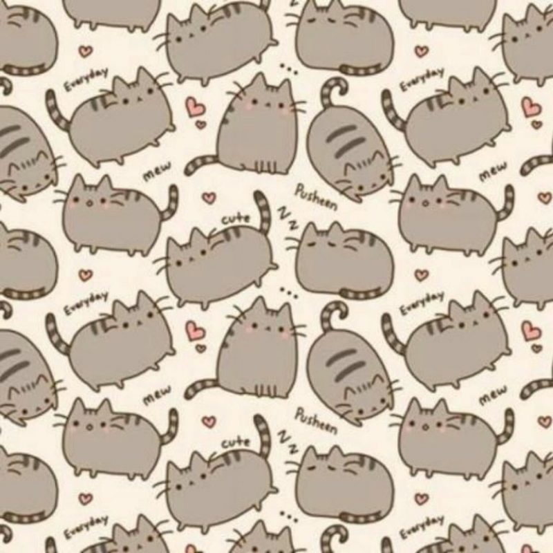 10 Latest Pusheen The Cat Wallpaper FULL HD 1920×1080 For PC Background 2020 free download pusheen cat wallpaper sharedjuliantonelli e280a0 800x800