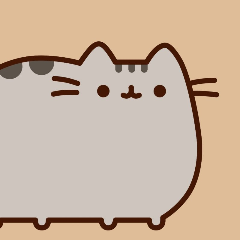 10 Latest Pusheen The Cat Wallpaper FULL HD 1920×1080 For PC Background  2018 Free