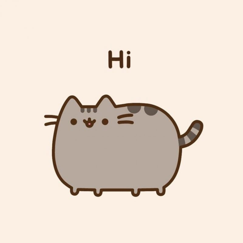 10 Latest Pusheen The Cat Wallpaper FULL HD 1920×1080 For PC Background 2020 free download pusheen wallpaper phone background cute pinterest pusheen 800x800