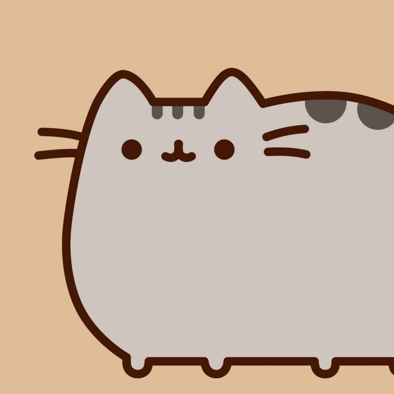 10 Latest Pusheen The Cat Wallpaper FULL HD 1920×1080 For PC Background 2020 free download pusheen wallpapers c2b7e291a0 800x800
