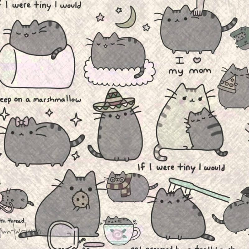 10 Latest Pusheen The Cat Wallpaper FULL HD 1920×1080 For PC Background 2020 free download pusheen wallpapers wallpaper cave 800x800