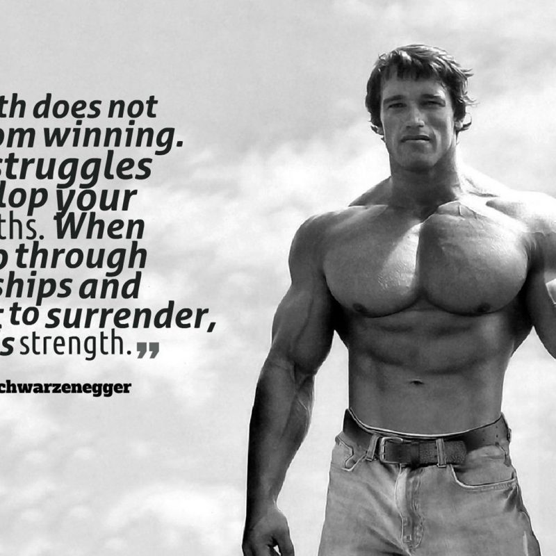 10 New Arnold Schwarzenegger Wallpaper 1920X1080 FULL HD 1920×1080 For PC Background 2018 free download quote motivational arnold schwarzenegger wallpapers hd desktop 800x800