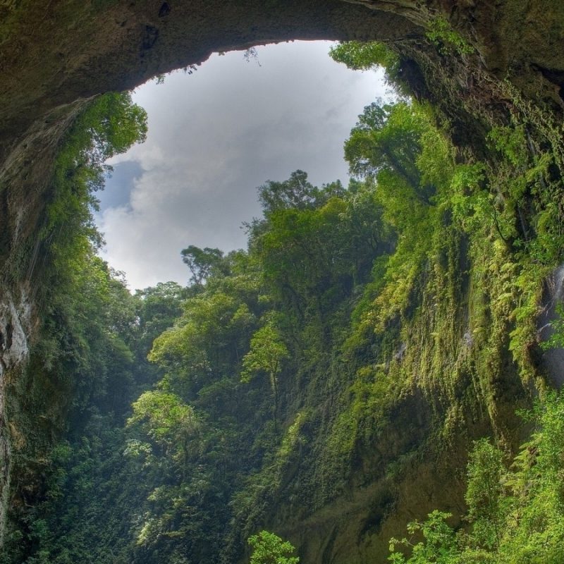 10 Top Hd Rain Forest Wallpaper FULL HD 1080p For PC Desktop 2018 free download rain forest e29da4 4k hd desktop wallpaper for 4k ultra hd tv e280a2 wide 800x800