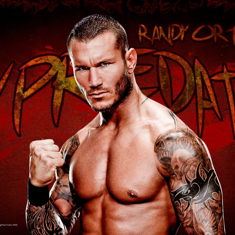 10 New Wwe Randy Orton Wallpaper FULL HD 1920×1080 For PC Background 2021 free download randy orton images wallpapers 60 images 800x800