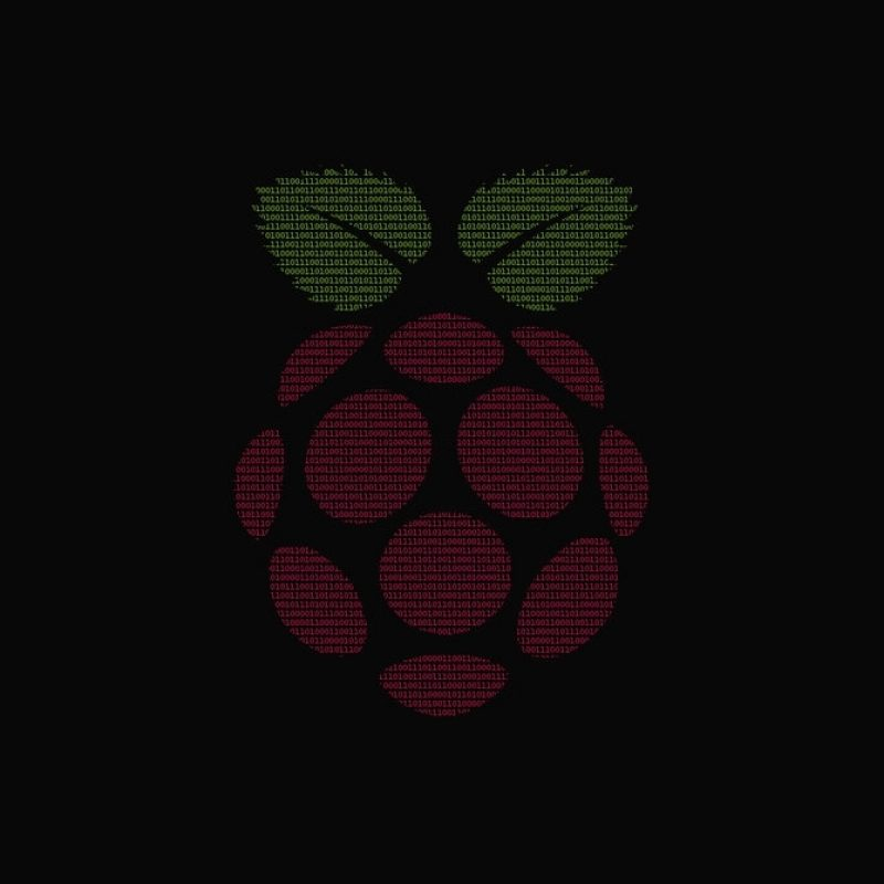 10 New Raspberry Pi Logo Wallpaper FULL HD 1920×1080 For PC Background 2021 free download raspberry pi 1920x1080 binary wallpapersamwhiteuk on deviantart 800x800