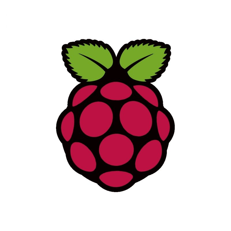 10 New Raspberry Pi Logo Wallpaper FULL HD 1920×1080 For PC Background 2021 free download raspberry pi wallpaper rasplapse 800x800