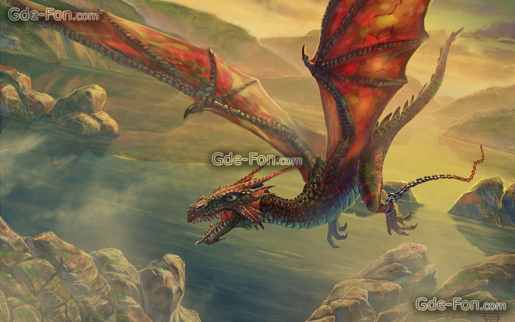 real dragon flying in the sky dragons out of the sky | dragons