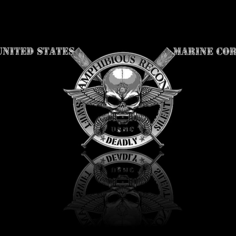 10 Best Marine Corps Emblem Wallpaper FULL HD 1920×1080 For PC Desktop 2018 free download recon wallpaper wallpaper studio 10 tens of thousands hd and 1 800x800