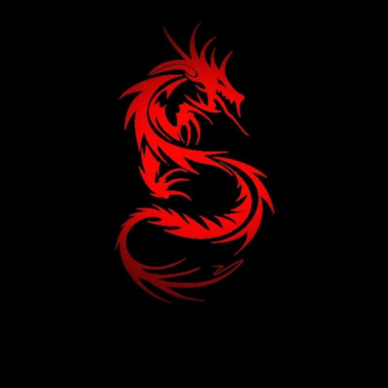 10 Top Red Black Dragon Wallpaper FULL HD 1920×1080 For PC Background 2021 free download red and black dragon wallpaper 64 images 1 800x800