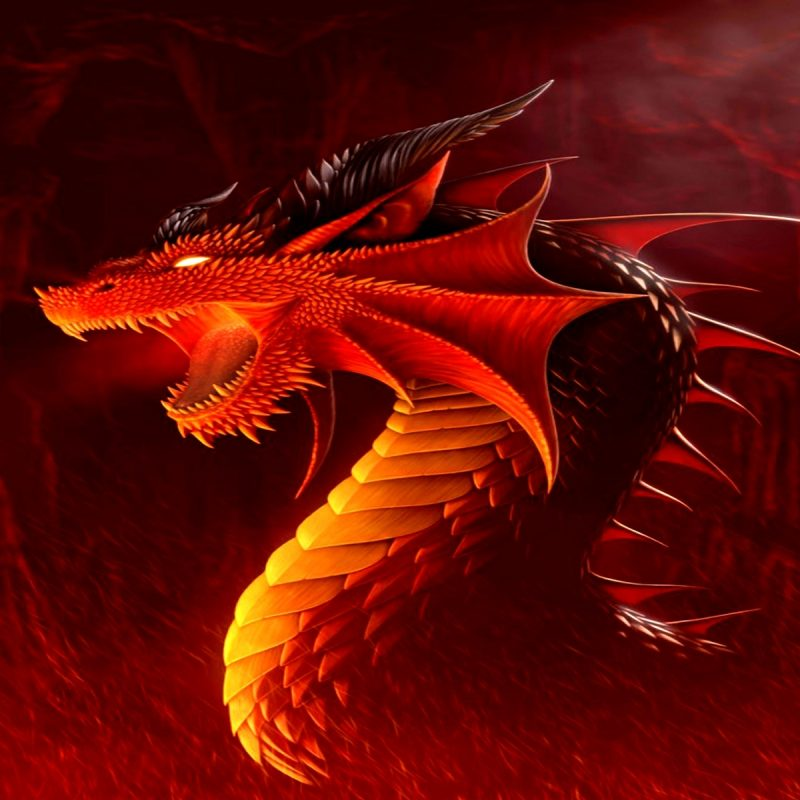 10 Top Red Dragon Hd Wallpaper FULL HD 1920×1080 For PC Desktop 2018 free download red dragon wallpapers hd media file pixelstalk 1 800x800