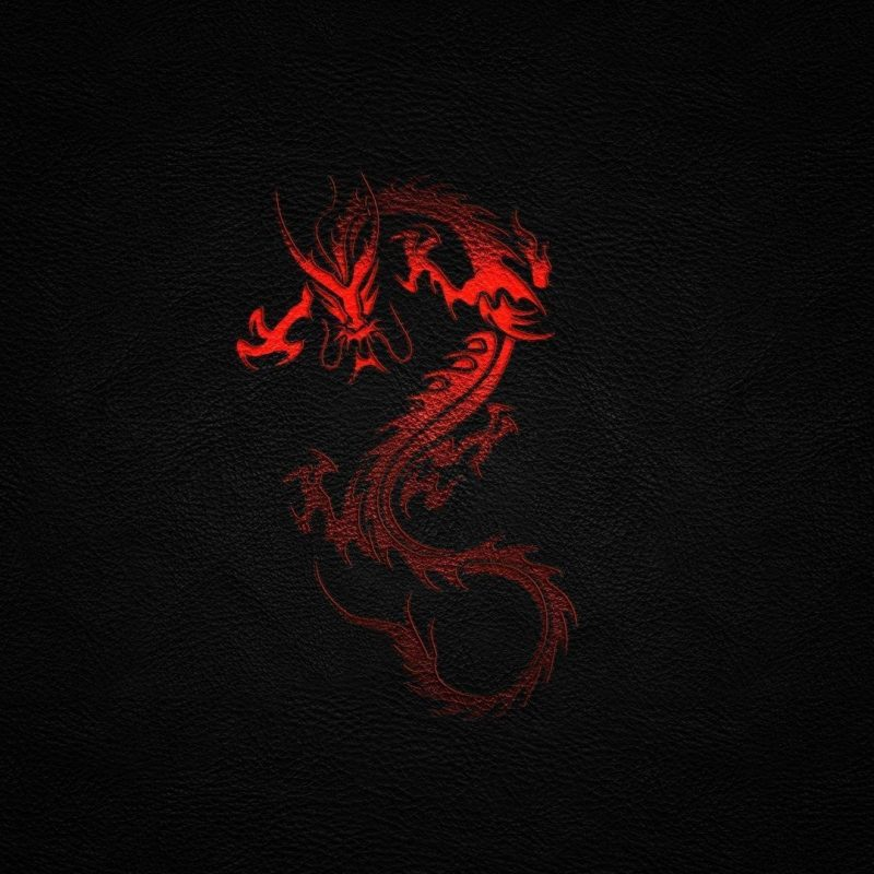10 Top Red Black Dragon Wallpaper FULL HD 1920×1080 For PC Background 2021 free download red dragon wallpapers wallpaper cave 1 800x800