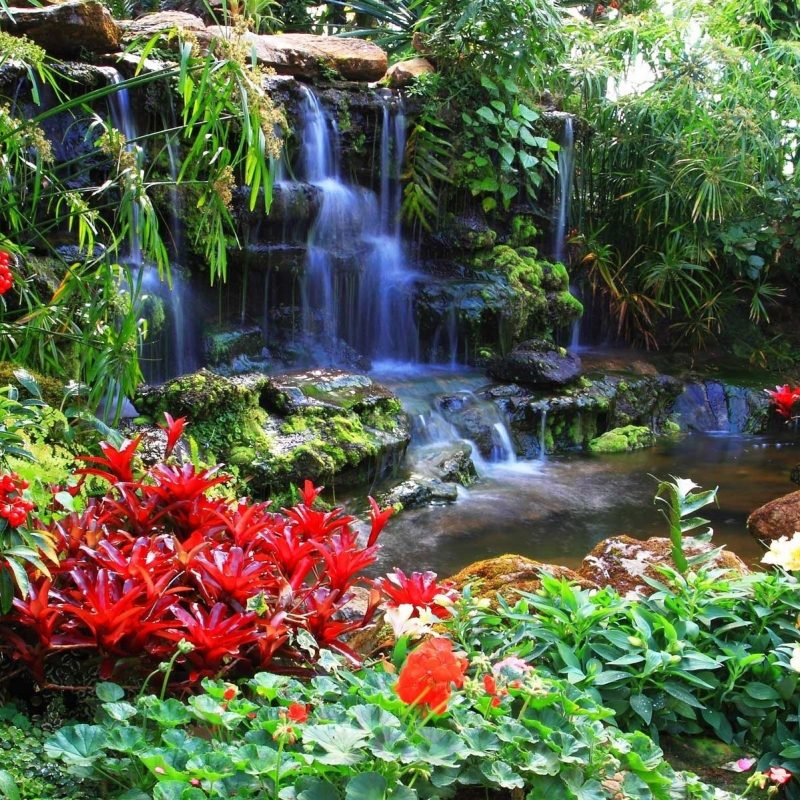 10 Best Waterfall And Flowers Wallpaper FULL HD 1080p For PC Desktop 2018 free download red flowers at the waterfall wallpapers and images wallpapers 800x800