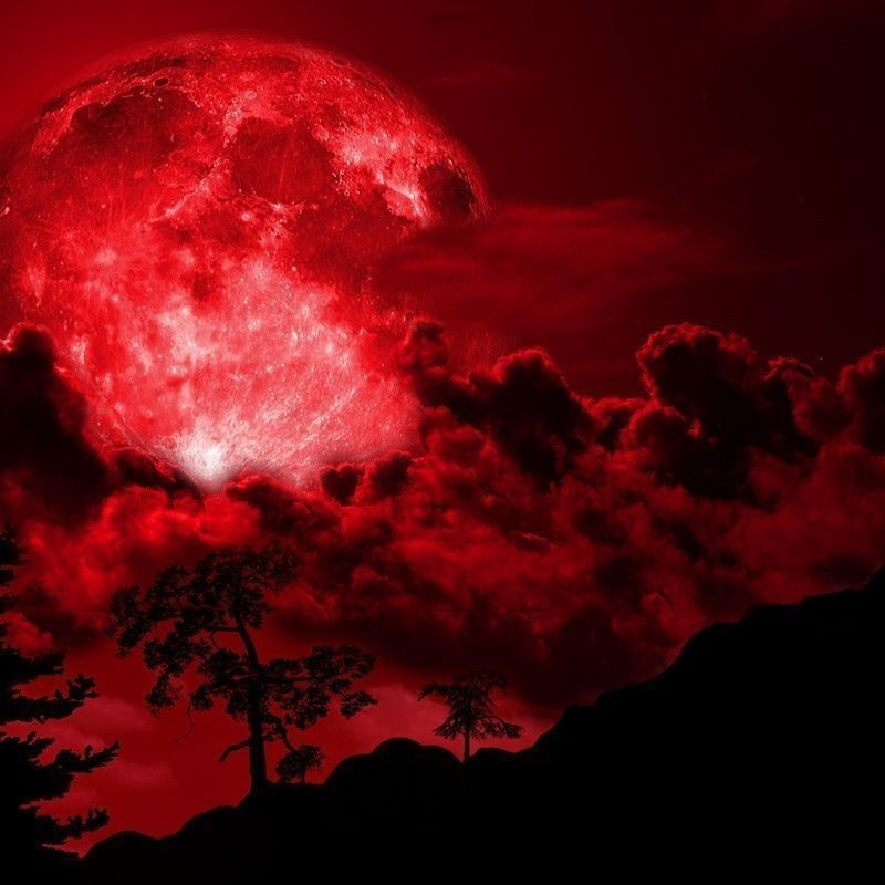 10 Best Red Moon Wallpaper Hd FULL HD 1080p For PC Background 2020 free download red full moon wallpaper 2018 wallpaper hd wallpaper red moon 800x800
